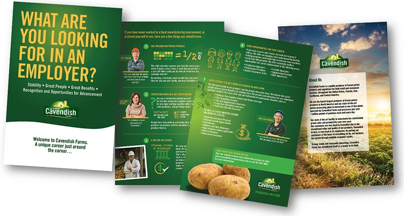 Cavendish Farms Talent Attraction Campaign Recruiting Brochure